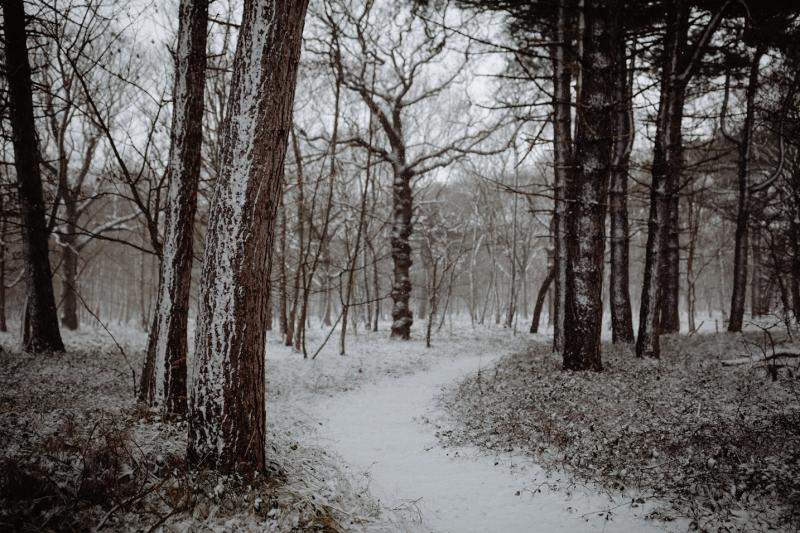 winter sneeuw zeeland manteling walcheren fotograaf zeeland