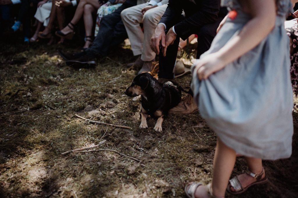 trouwfotograaf veluwe festivalbruiloft tuin ceremonie in het bos